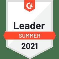 g2-insync-healthcare-solutions-leader-spring-2021-mental-health