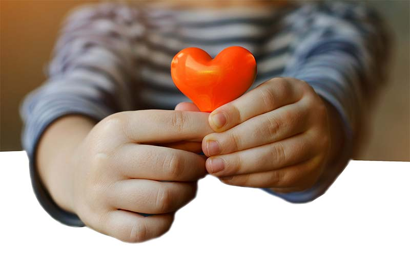 Childrens-place-aiken-south-carolina-ehr-implementation-success-story-3