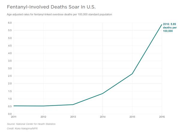 fentanyl overdose rates graph - npr