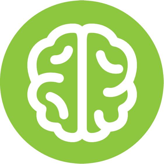 brain2 (2).png